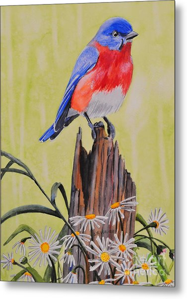 Bluebird And Daisies Metal Print