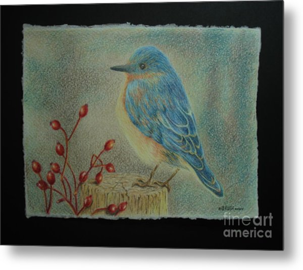 Bluebird Of Happiness Metal Print