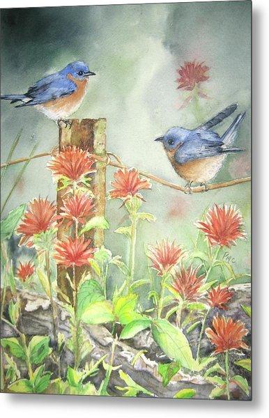 Bluebirds And Indian Paintbrush Metal Print