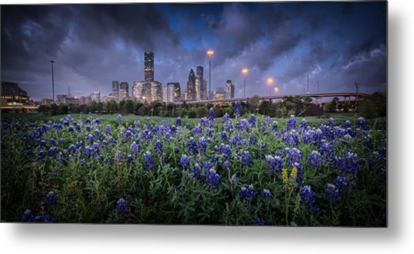 Bluebonnet Houston Metal Print