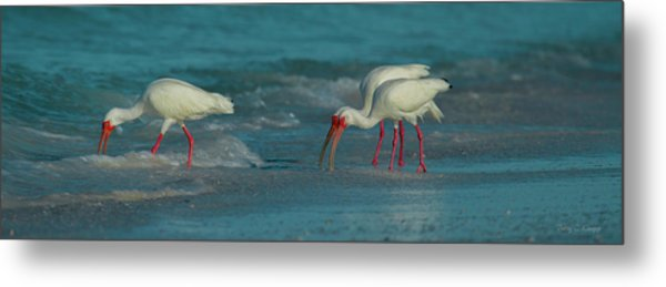 Blues Trio Cortez Beach Metal Print