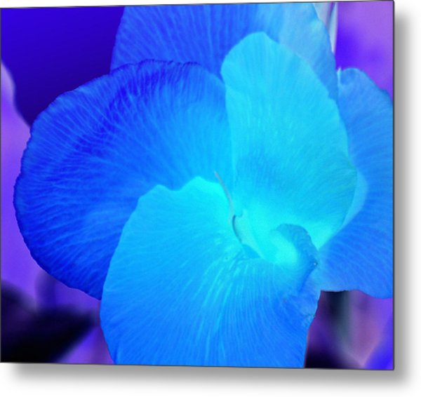 Blurple Flower Metal Print