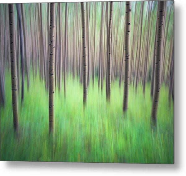 Blurred Aspen Trees Metal Print