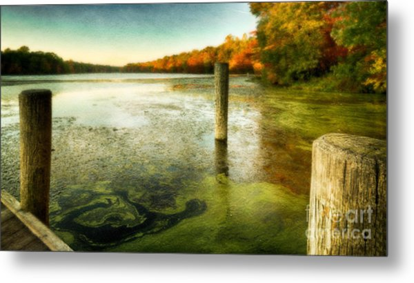 Blydenberg Park In The Fall Metal Print