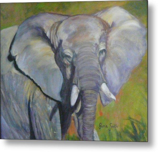 Bo Bo The Elephant Metal Print