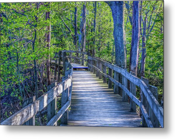 Boardwalk Going Into The Woods Metal Print