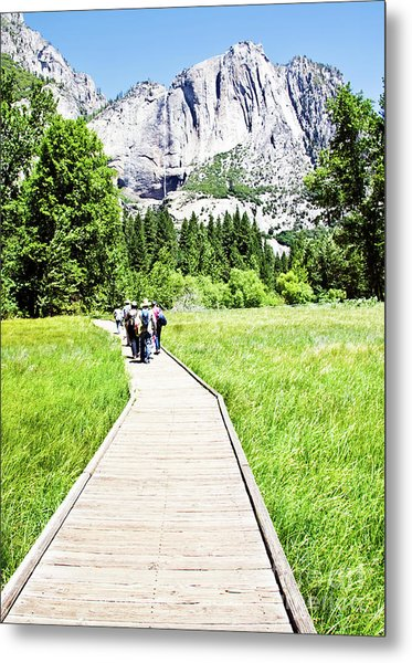 Boardwalk On Yosemite Meadow Metal Print