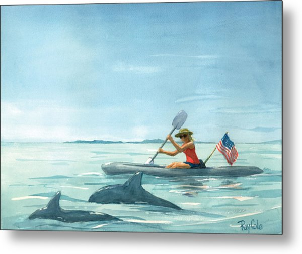 Boating Dolphin Metal Print