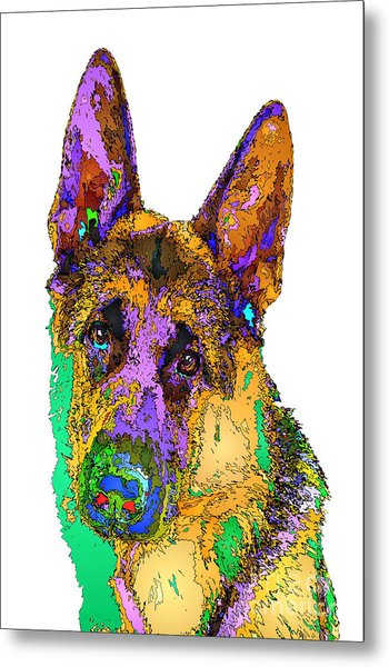 Bogart The Shepherd. Pet Series Metal Print