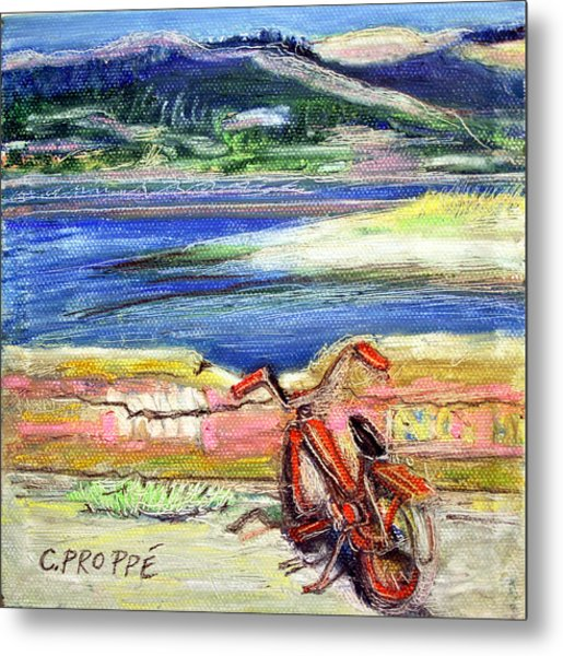Bolinas Bike Metal Print by Colleen Proppe