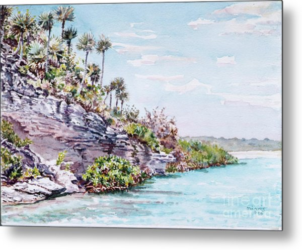 Bonefish Creek Watercolour Study Metal Print