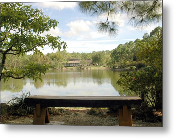 Bonsai Lake Metal Print