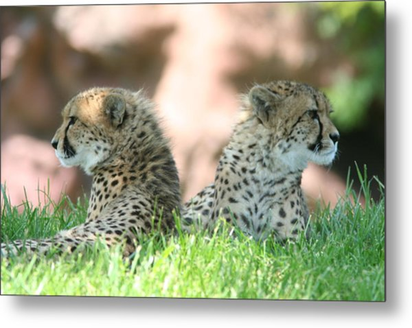 Bookends Metal Print