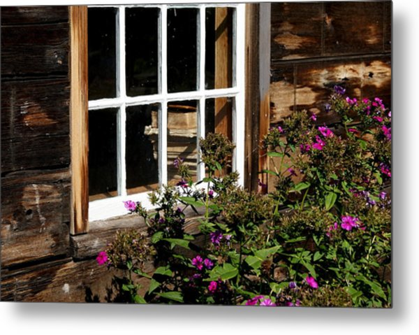 Books In The Window Metal Print by Lois Lepisto