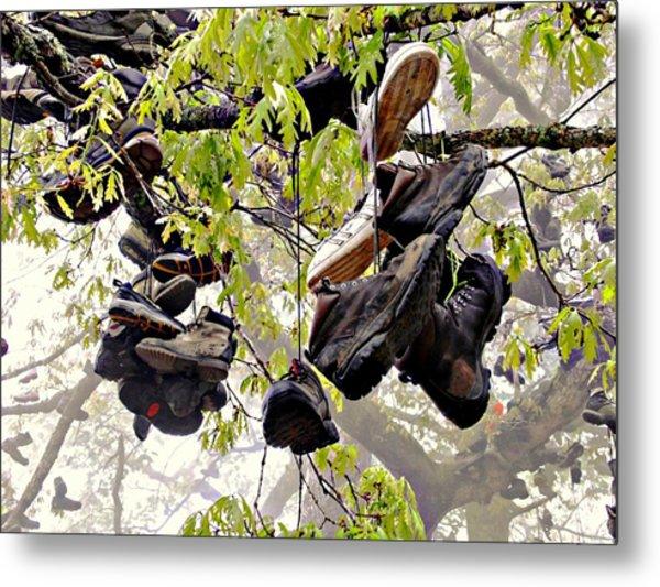 Boot Tree At Neels Gap Metal Print