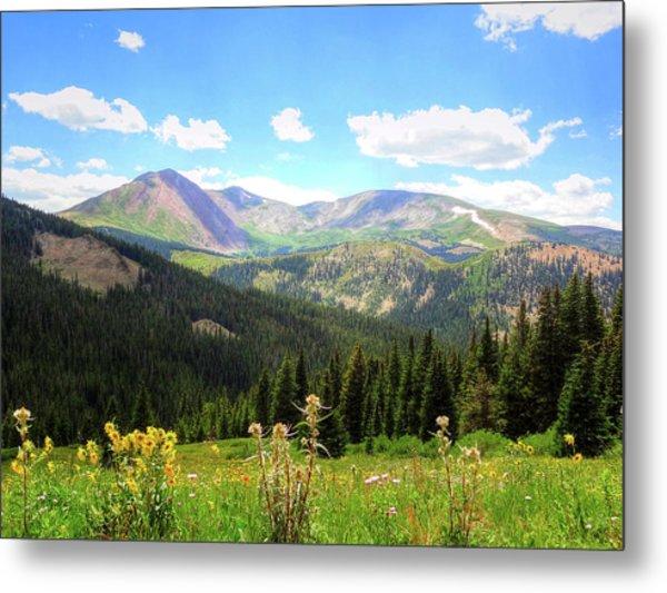 Boreas Pass Colorado Metal Print