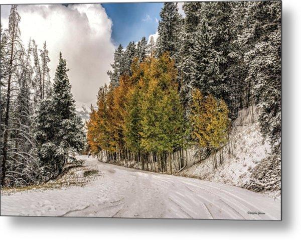 Boreas Pass Road Aspen And Snow Metal Print