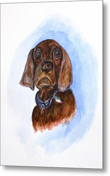 Bosely The Dog Metal Print