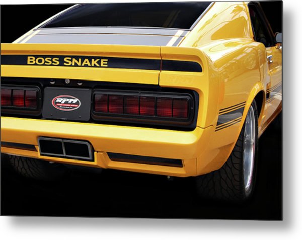 Boss Snake Metal Print