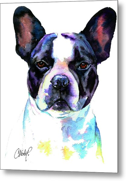 Boston Bulldog Portrait Metal Print