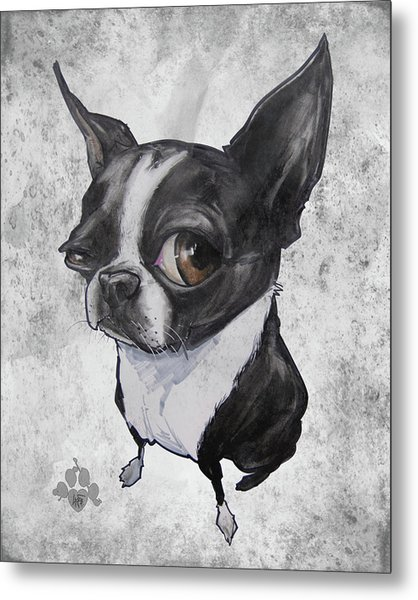 Boston Terrier - Grey Antique Metal Print