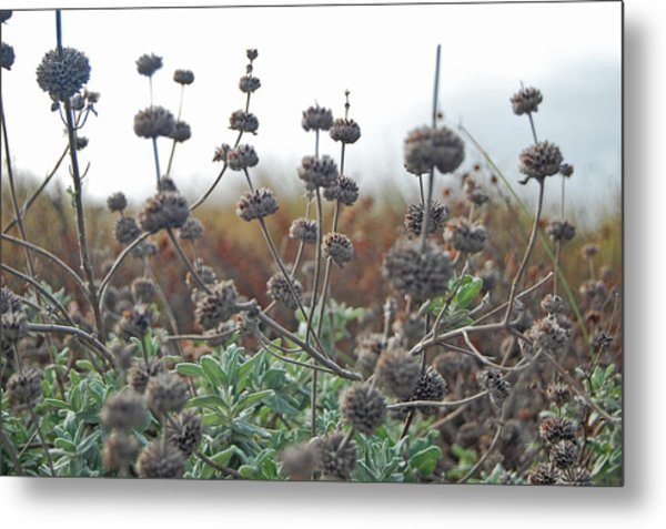 Botanical Towers Metal Print by Jean Booth