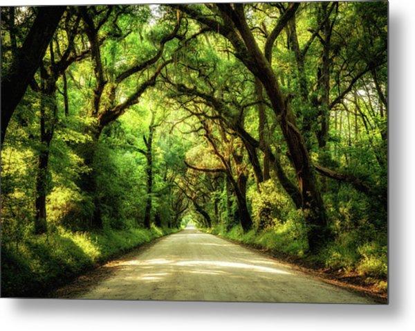 Botany Bay Road Metal Print