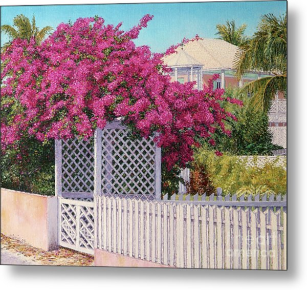 Bougainvillea Crown Metal Print