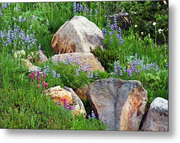 Boulder Blooms Metal Print