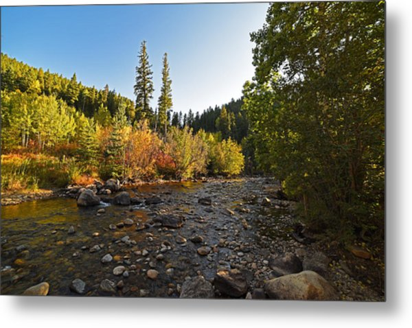 Boulder Colorado Canyon Creek Fall Foliage Metal Print