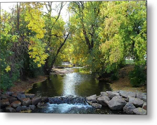 Boulder Creek Tumbling Through Early Fall Foliage Metal Print