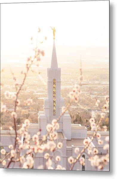 Bountiful Temple Blooms Metal Print