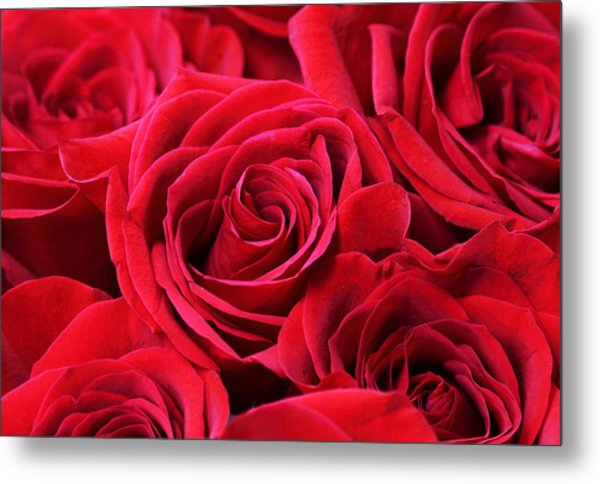 Bouquet Of Red Roses Metal Print