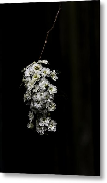 Bouquet Of White Metal Print