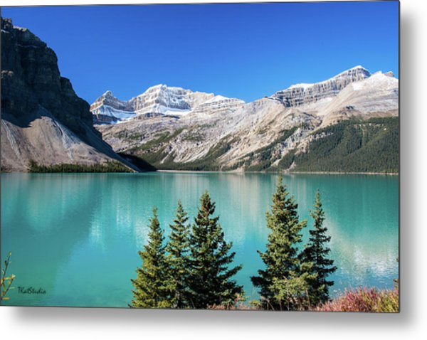Bow Lake Metal Print