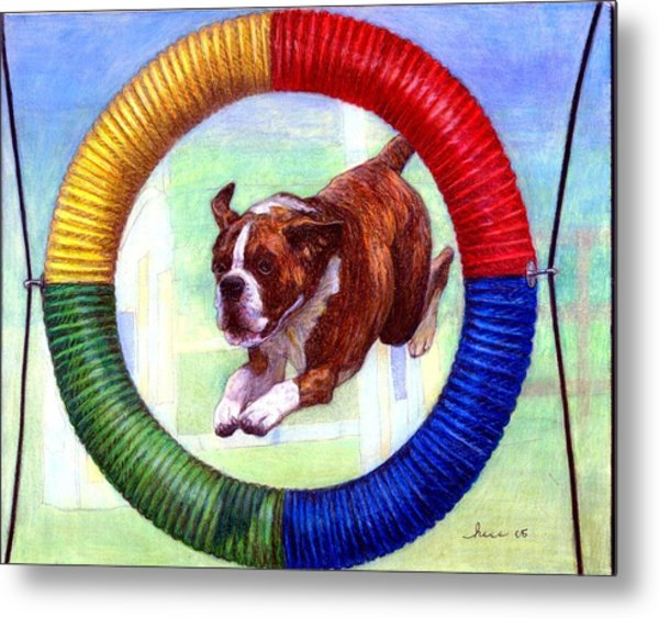 Boxer Dog Agility Class Metal Print by Olde Time  Mercantile