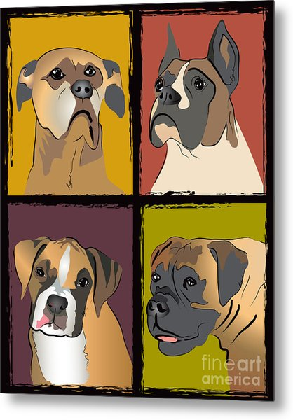 Boxer Dog Portraits Metal Print