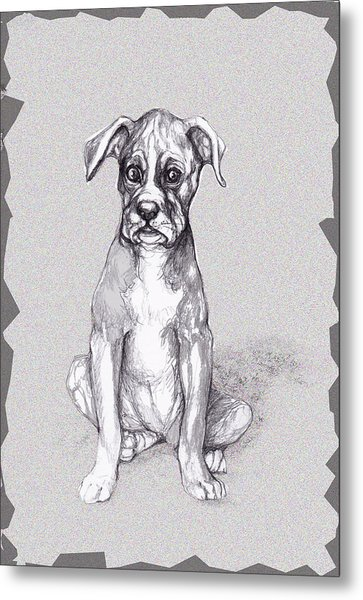 Boxer Pup Metal Print by Peggy Wilson