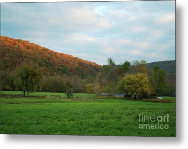 Boxley Valley Arkansas Metal Print