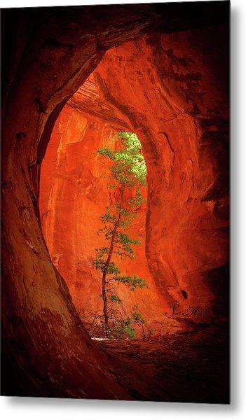 Boynton Canyon 04-343 Metal Print
