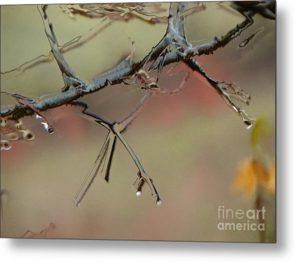 Branch With Water Abstract Metal Print