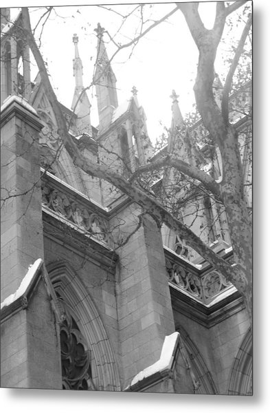 Branches Of Prayer Metal Print by Kate Collins