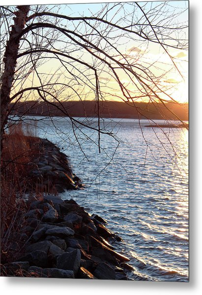 Late-summer Riverbank Metal Print