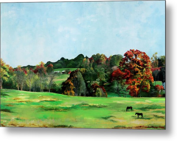 Beaver Valley Metal Print
