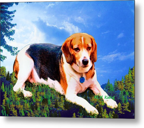 Bravo The Beagle Metal Print