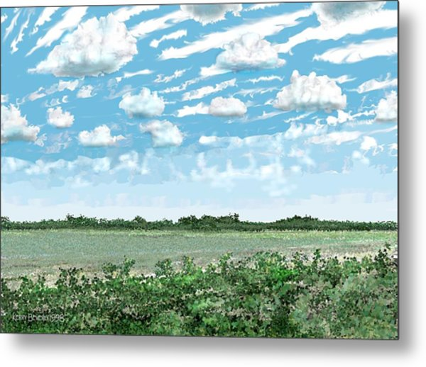 Brazoria County Field Metal Print