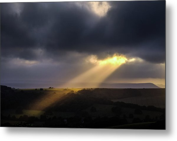 Metal Print featuring the photograph Breaking Through by Will Gudgeon