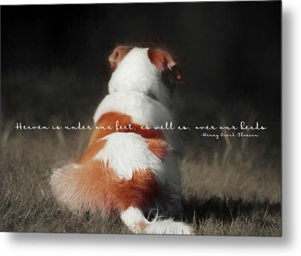 Breaktime Quote Metal Print by JAMART Photography