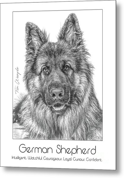 Breed Poster German Shepherd Metal Print