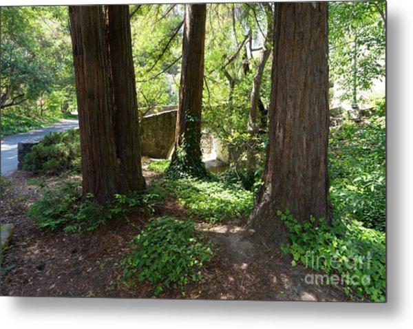Bridge At Strawberry Creek Sproul Plaza At The University Of California Berkeley Dsc6292 Metal Print